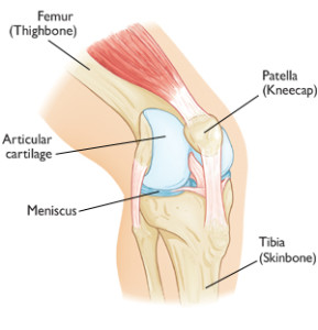 pain above knee cap after cycling