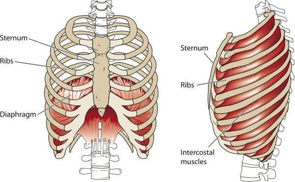 sternum pain burning sensation