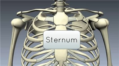 sternum pain breathing problems