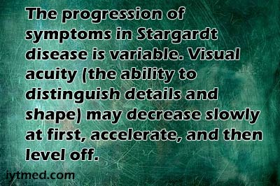 stargardt's disease stem cell treatment