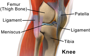 knee pain after swimming
