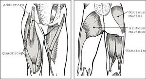 sore inner thigh muscles from exercise