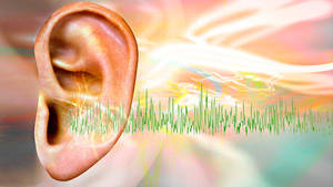 Why ears start ringing - causes of tinnitus