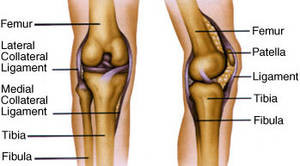 joint pain ankle doctor