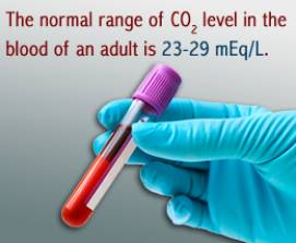 normal carbon dioxide levels