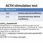 acth stimulation test | iytmed, Skeleton