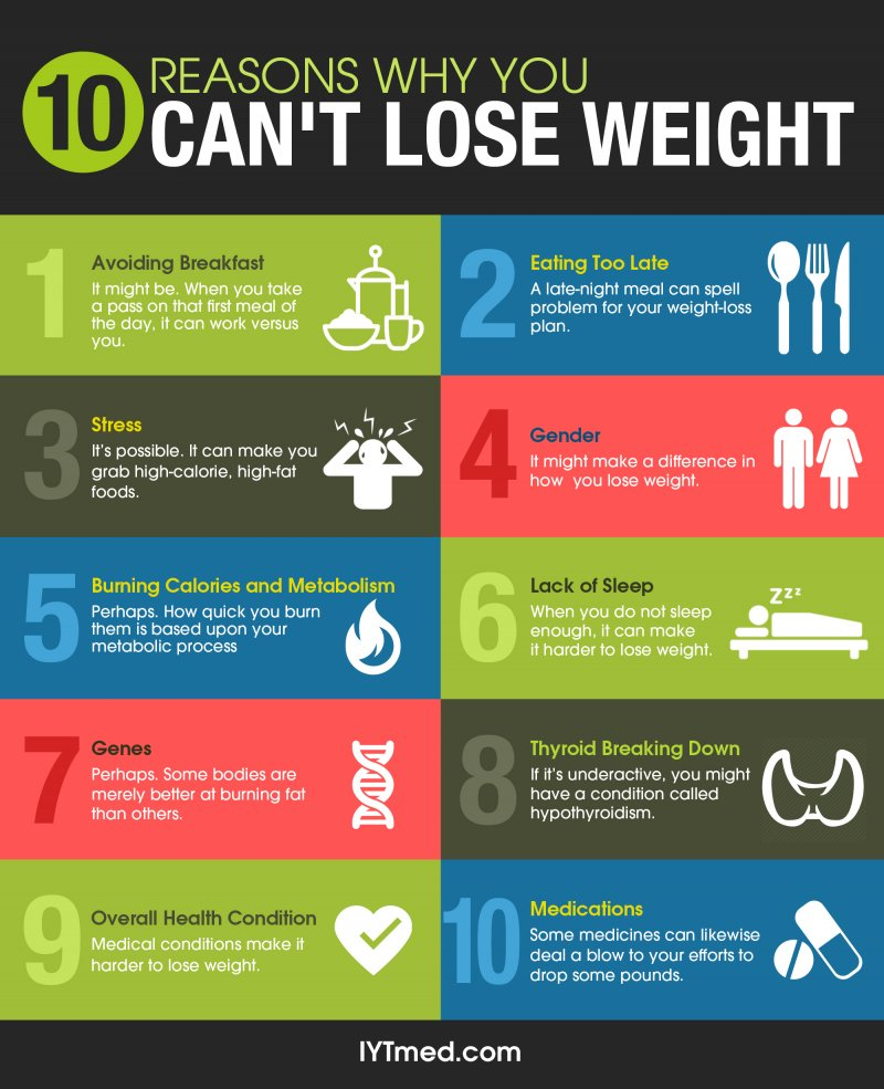 Reason Why You Cant Lose Weigh recommendations