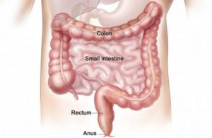 colonic cleansing benefits
