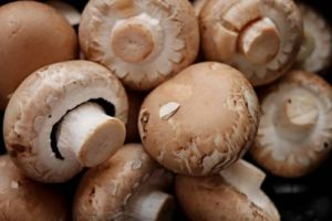 Protein in Mushrooms