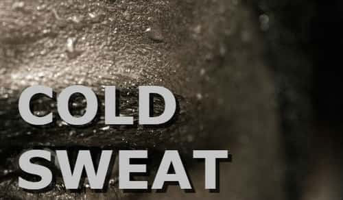 """Cold sweats can be caused by a variety of different conditions. They're often associated with your body's """"fight or flight"""" response."""