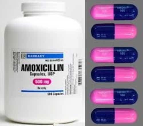 Amoxicillin 500mg in capsules to treat UTI